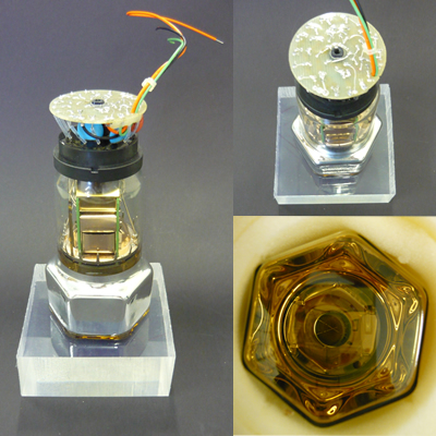 10 stage photomultiplier BURLE S83020F